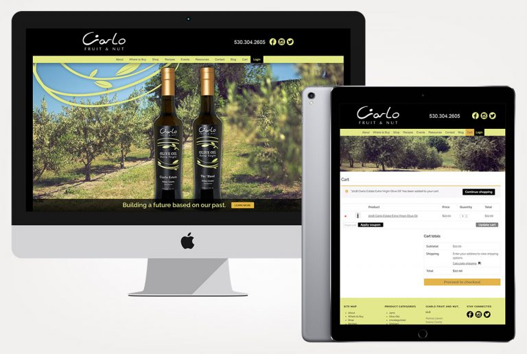 web design services ciarlo