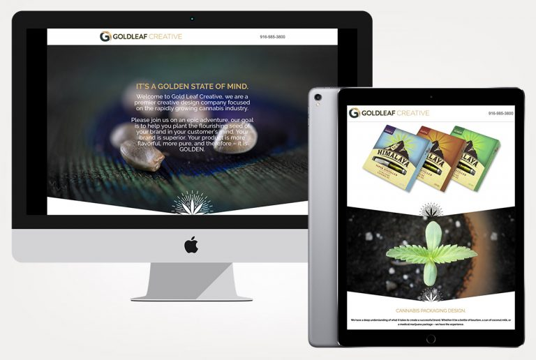 web design services goldleaf