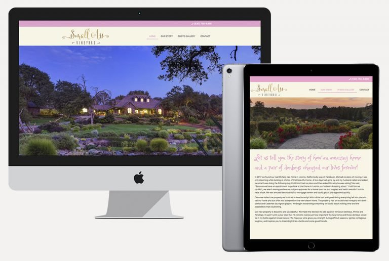 web design services small ass vineyards